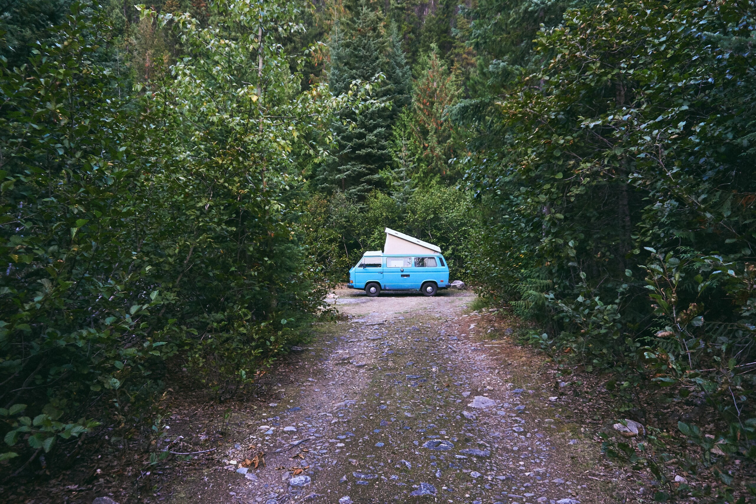 forest driveway with camping van